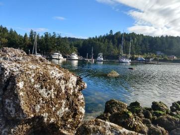 The Port Browning Marina.